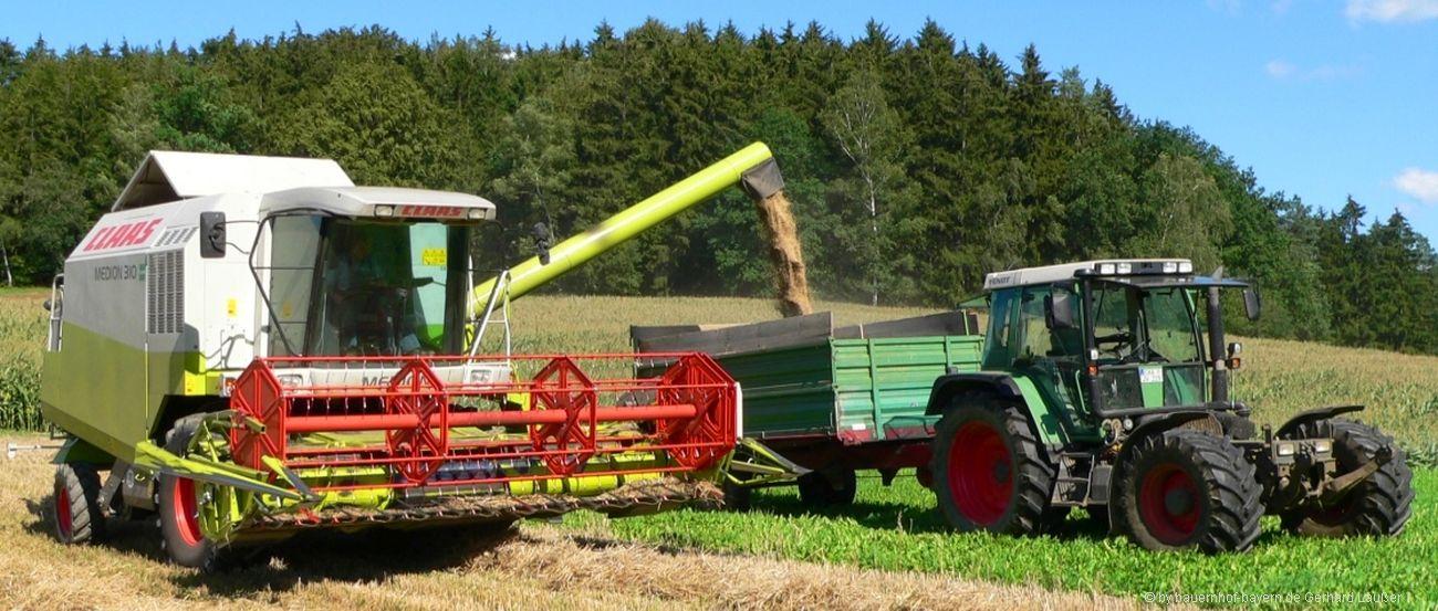 bauernhofurlaub-bayerischer-wald-getreideernte-traktor-fahren-1300