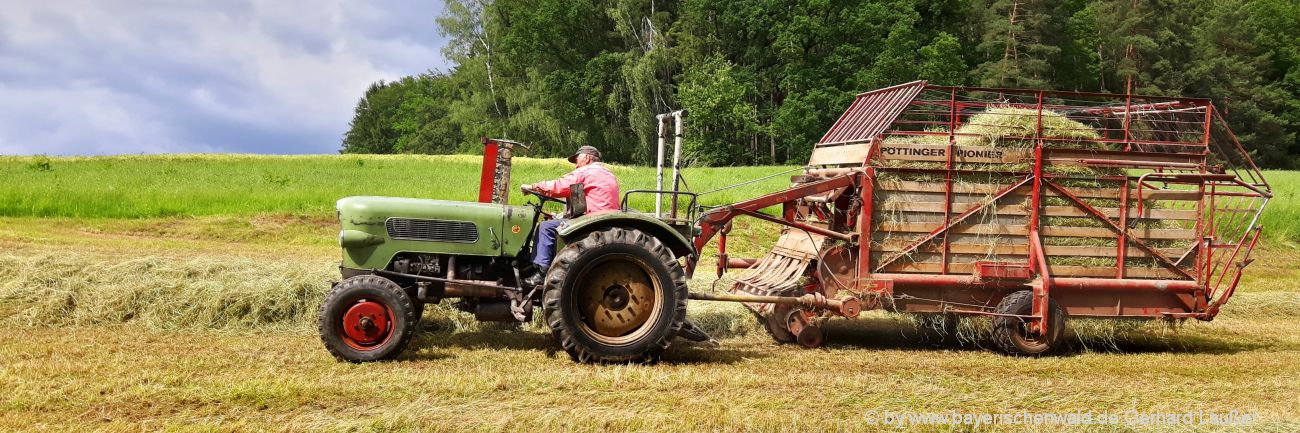 Bayerischer Wald Bauernhofurlaub mit Traktor fahren