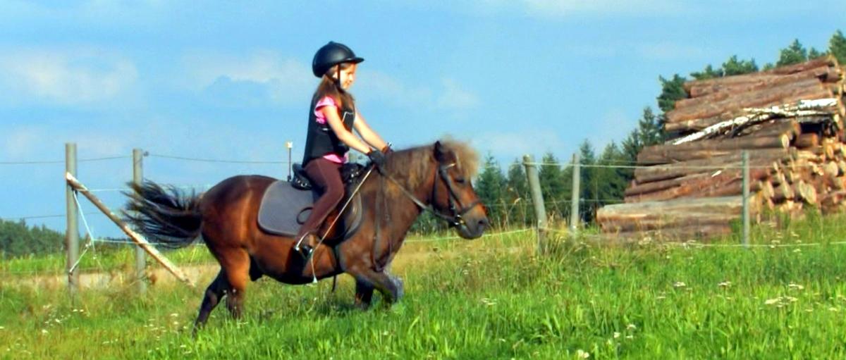 Bauernhof Reiterferien für Mädchen in Bayern Reiturlaub für Teenager