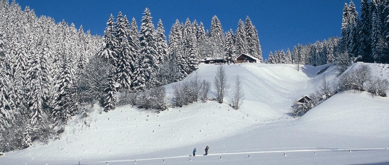 Winterurlaub Bayerischer Wald mit Skifahren und Langlaufen